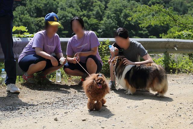 연수원 동물매개치유 28.jpg